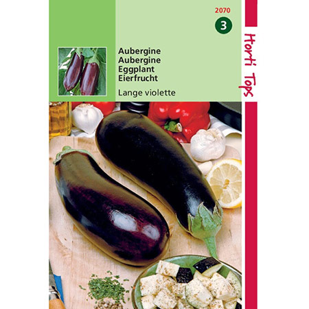 Photo de Aubergine, violette hâtive